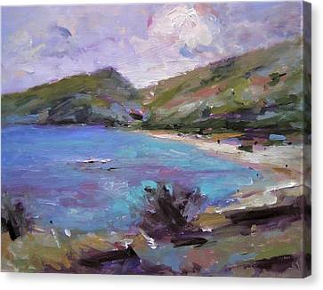 Hanauma Bay Sketch Canvas Print by R W Goetting
