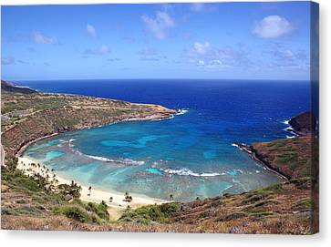 Hanauma Bay Underwater Park Canvas Print by Kevin Smith