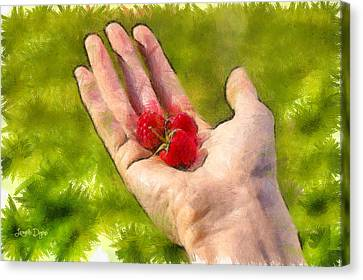 Hand And Raspberries - Pa Canvas Print by Leonardo Digenio
