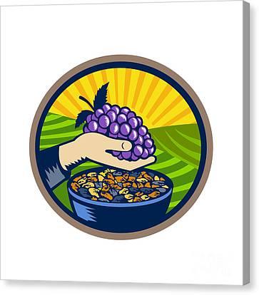 Hand Holding Grapes Raisins Oval Woodcut Canvas Print