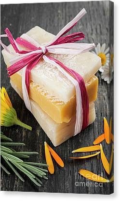 Handmade Soaps With Herbs Canvas Print by Elena Elisseeva