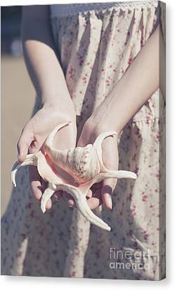 Hands Holding Large Seashell Canvas Print by Jorgo Photography - Wall Art Gallery