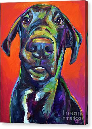 Handsome Hank Canvas Print by Robert Phelps