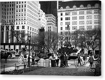 Hanging At The Grand Army Plaza Canvas Print by John Rizzuto