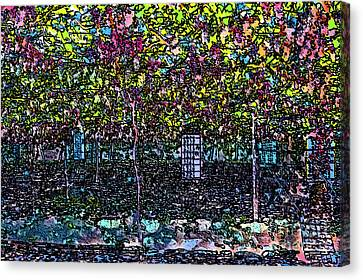 Hanging Grapevines Canvas Print by Bob Phillips