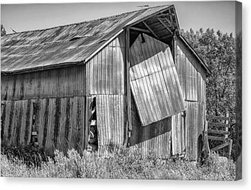 Hanging In - Bw Canvas Print
