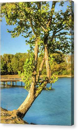 Hanging On - Lakeside Landscape Canvas Print by Barry Jones