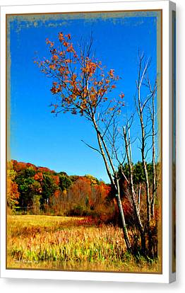 Canvas Print featuring the photograph Hanging On To Autumn by Joan  Minchak