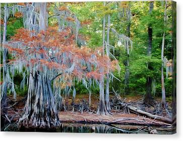Canvas Print featuring the photograph Hanging Rust by Lana Trussell