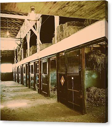 Hanover Shoe Farm Broodmare Stables Canvas Print by Paul Kercher