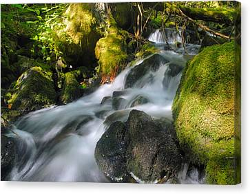 Hanson Falls Canvas Print by Larry Ricker