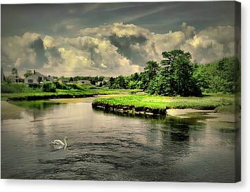 Gooch's Creek Canvas Print by Diana Angstadt
