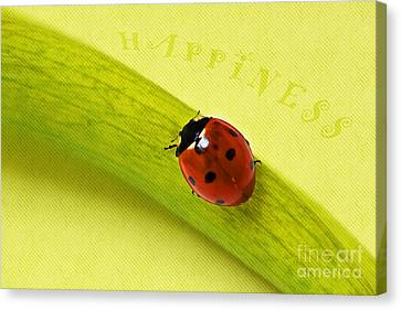 Happiness Canvas Print by Angela Doelling AD DESIGN Photo and PhotoArt