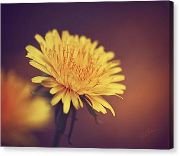 Canvas Print featuring the photograph Happiness Is by Kharisma Sommers