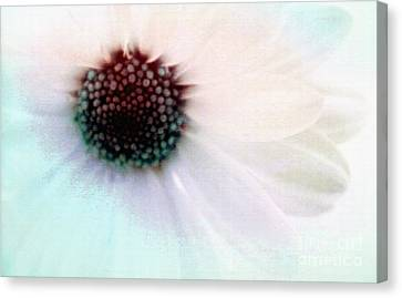 Happiness Surrounds Canvas Print