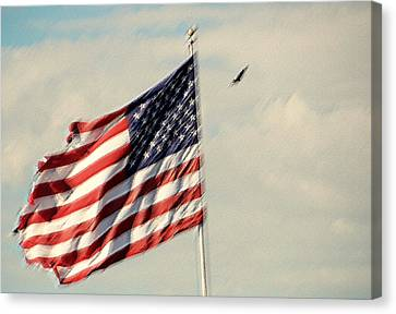 Happy Birthday America Canvas Print by Susanne Van Hulst