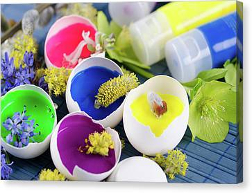 Happy Colorful Easter Decoration With Egg Shells Filled With Paints And Spring Flowers Canvas Print by Dariya Angelova