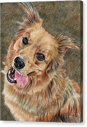 Happy Dog Canvas Print by Joanne Stevens