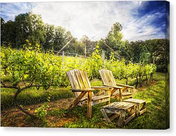 Happy Hour At The Vineyard Canvas Print by Debra and Dave Vanderlaan