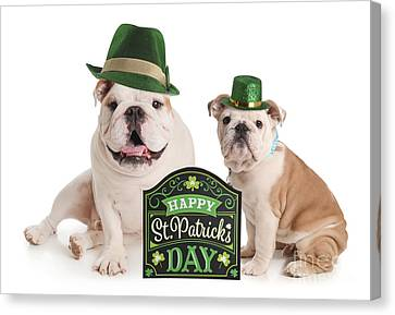 Doggy Cards Canvas Print - Happy St Patricks Day Pups by Jt PhotoDesign