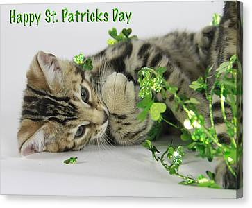 Happy St. Patricks Day Canvas Print by Shoal Hollingsworth