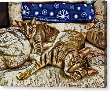 Happy Together Canvas Print by David G Paul