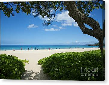 Hapuna Beach Canvas Print by Ron Dahlquist - Printscapes