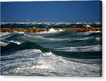 Harbor Blues - Cape Cod Bay Canvas Print by Dianne Cowen