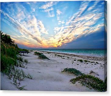 Harbor Island Sunset Canvas Print by Anthony Dezenzio