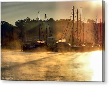 Canvas Print featuring the photograph Harbor Mist by Brian Wallace
