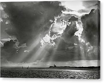 Harbor Sail Canvas Print by Charles Harden