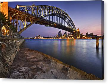 Harbour Nights Canvas Print by Renee Doyle