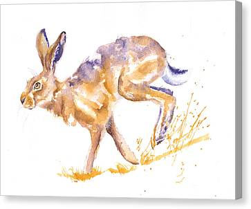 March Hare Canvas Print - Harebrained by Debra Hall