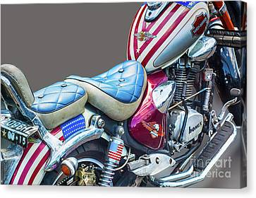 Canvas Print featuring the photograph Harley by Charuhas Images