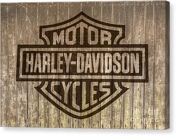 Harley Davidson Logo On Wood Canvas Print