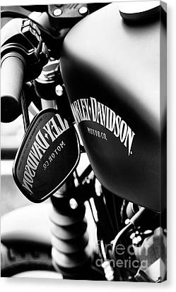Harley Iron 883 Canvas Print by Tim Gainey