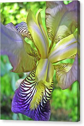 Harmony 4 Canvas Print by Lynda Lehmann
