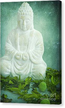 Harmony Canvas Print by Angela Doelling AD DESIGN Photo and PhotoArt