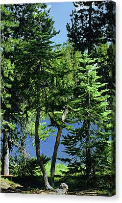 Harmony In Green And Blue - Manzanita Lake - Lassen Volcanic National Park Ca Canvas Print by Christine Till