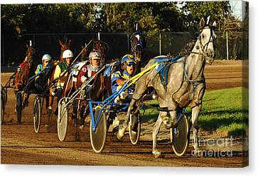 Harness Racing 11 Canvas Print by Bob Christopher