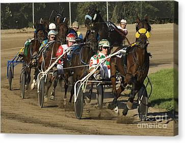 Harness Racing 9 Canvas Print by Bob Christopher