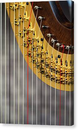 Harp Strings Canvas Print by Marco Oliveira
