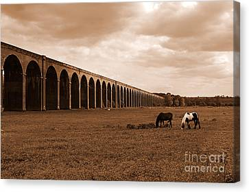 Harringworth Viaduct And Horses Grazing Canvas Print by Louise Heusinkveld