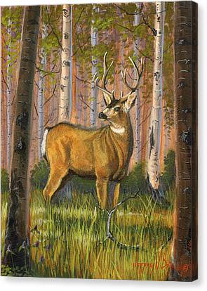 Hart Of The Forest Canvas Print by Jeff Brimley