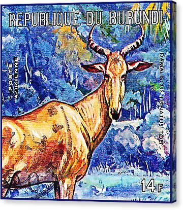 Hartebeest Canvas Print