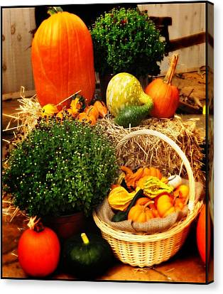 Harvest Canvas Print by Bill Cannon