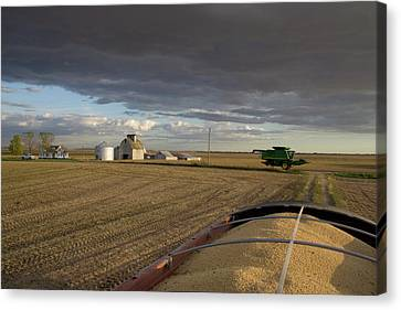 Harvest Memories Canvas Print by Dylan Punke
