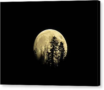 Canvas Print featuring the photograph Harvest Moon by Karen Shackles