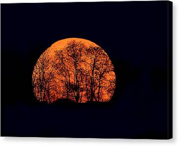 Harvest  Moon Rising Canvas Print by William Jobes