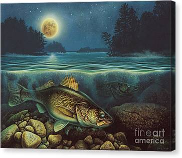 Harvest Moon Walleye IIi Canvas Print by JQ Licensing